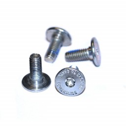 Powerslide Mounting Bolt